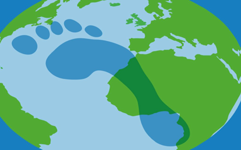 How students can help reduce the carbon footprint